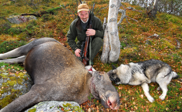 Elgjakt er rekreasjon, mosjon og matauk for over 60 000 mennesker i Norge. (Foto: Egill J. Danielsen)