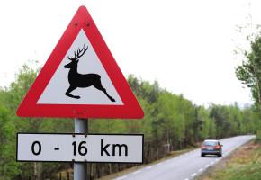 Hvert år registrerer norske kommuner ti tusen hendelser