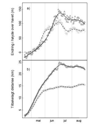 Figur 1. Figuren viser hvor langt elgene i snitt har gått fra 15. april til de ulike datoene utover sommeren (akkumulert distanse). Data er fra 144 GPS-merka elg i Nord-Trøndelag i 2006–2010. Trekanter er okser, sirkler er elgkyr. Det er ikke skilt mellom stasjonære og trekkende individer.