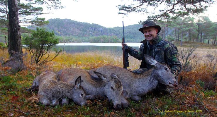 Ber hjortejegere ta skrantesjukeprøver