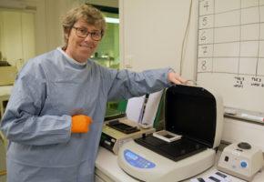 Veterinærinstituttet har testet 90 000 hjortedyr for skrantesjuke (CWD)